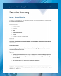 BIZ Plan Executive Summary