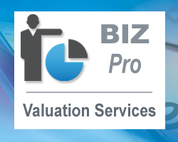 BIZ Pro Valuations